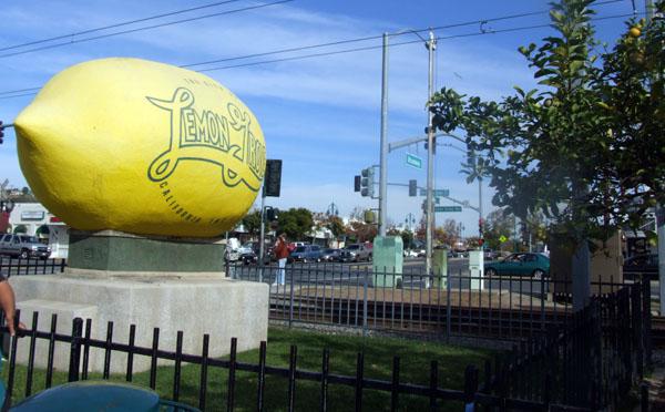 jewish singles in lemon grove Search for local single jewish men in california you can meet singles in california today dreamship lemon grove, ca.